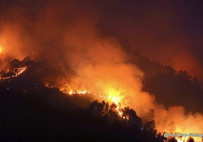 Forests are burning, animal & plant life are being charred is it another epidemic in Uttarakhand?