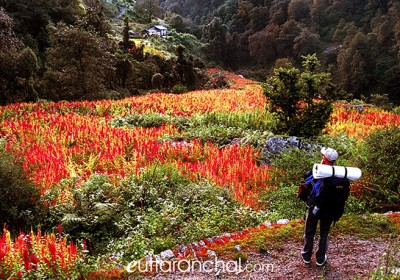10 Off-beat Treks in Garhwal region that every Wanderer must Undertake