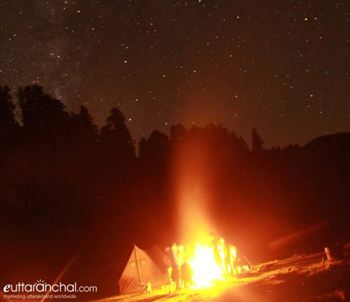 Starry night at Dayara Bugyal