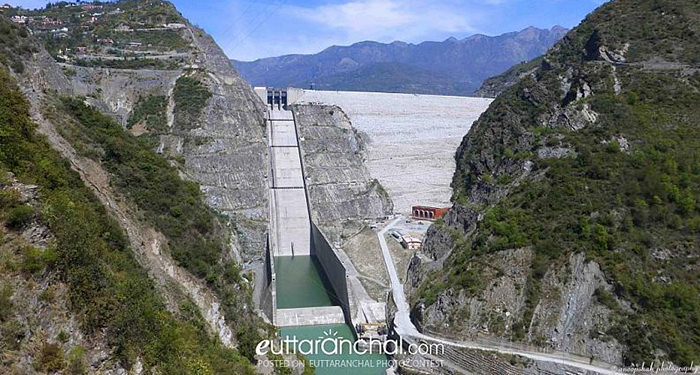 the building of dams essay