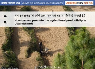 Agricultural productivity in Uttarakhand