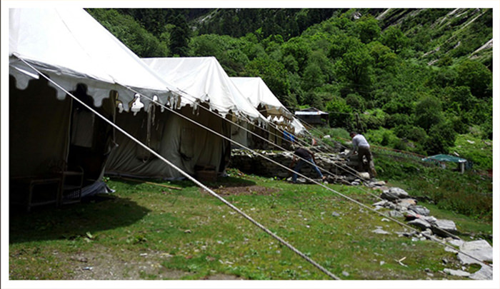 Ghangaria Valley Camp, Ghangaria-