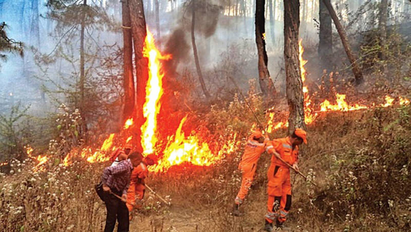 Forest Fire in Uttarakhand