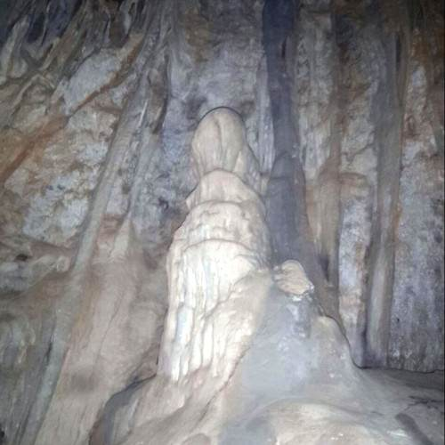 Cave discovered in Tyuni, Dehradun