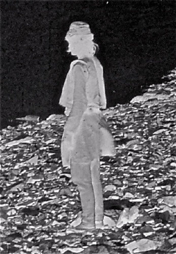 Enlarged view of figure by lake