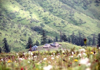 Dayara Bugyal: The meadows above clouds