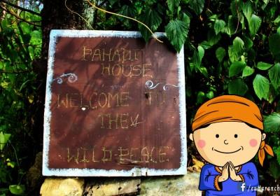Explore Pahadi House with Nanda