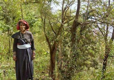 प्रभा देवी सेमवाल: जिन्होंने उगाए 500 से अधिक पेड़, आज है खुद का एक वन